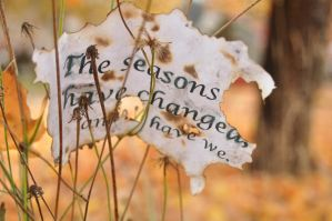 The Seasons by melgan1
