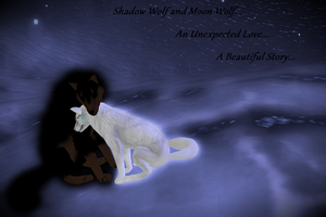Shadow Wolf and Moon Wolf by TruthOfTheMt