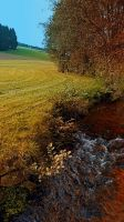 A little stream, the valley and some nature by patrickjobst