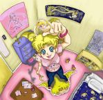 Sailor Moon Collection by luvusagi