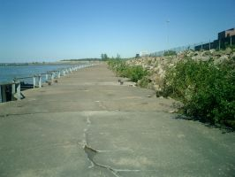 Lakeshore Pathway by caffiend