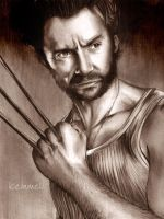 Wolverine - Done 'EDIT' by kleinmeli