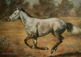 Freedom - Oil Painting by AstridBruning