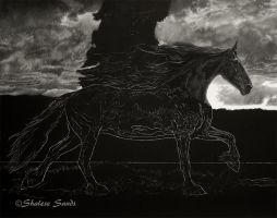 Friesian Scratchboard - WIP by Misted-Dream