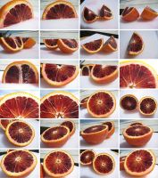 Citrus Stock- Blood Orange A by setsuna22
