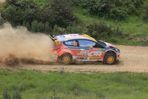 2013, Prokop, Ford, Ourique, Rally Portugal by F1PAM