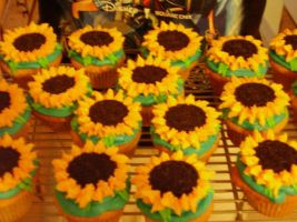 Sunflower Cupcakes by EternalWandering
