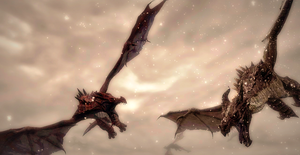 Skyrim wallpaper: Dogfight by Naytile