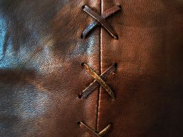 leather texture - 1 by DiZa-74