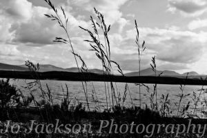 Loch Laidon through the grass by Britwitch-1981