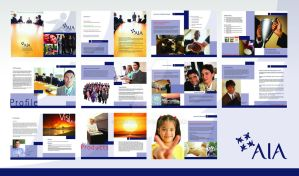 AIA Company Profile by kn33cow