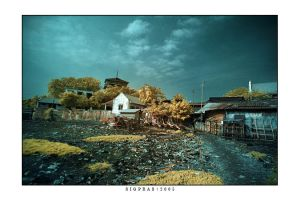 b a h a r i by indonesia