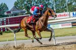 Horse Racing 527 by JullelinPhotography