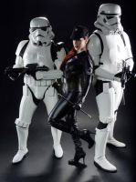Star Wars: Imperial Officer With Stormtroopers by Luxxurious