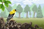 The Goldfinch by quail-bandit