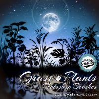 [Grass and Plants] Photoshop Brushes by Romenig
