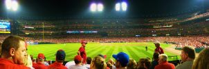 St. Louis Cardinals 2009 by daveypeterson