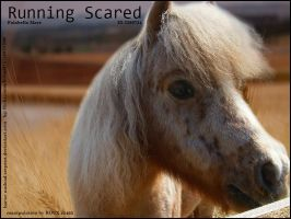 Running Scared by RouxHP