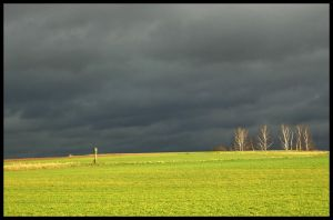 rain to come by Mittelfranke