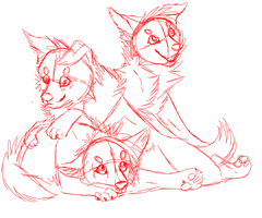 Puppies sketch by Taunii