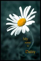 My name is daisy by Ciril