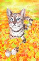 Autumn kitty by SirKittenpaws