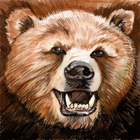 Grizzly Bear by PM-Graphix