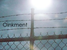 Fences at High Speeds by Oinkment