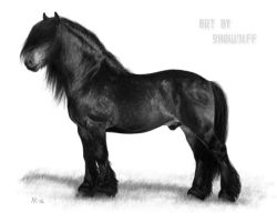 North Swedish Drafthorse by SheWolff
