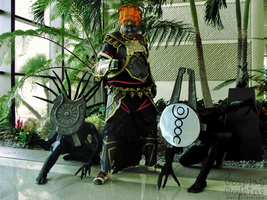 Ganondorf and Shadow Beasts by CosplayCousins