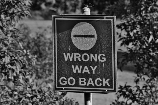 Wrong Way. by TiaLeTurtlex3