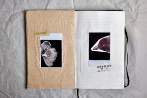 I have a collage book 12 by LTKJJ