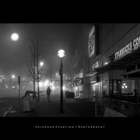 Stranger in the Mist II by Val-Faustino