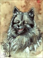 Keeshond Sketch by Valhalrion