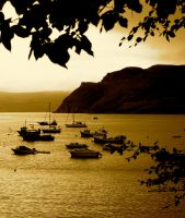 Golden Portree Harbour by gee231205