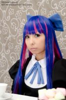 Stocking by Hitomi-Cosplay