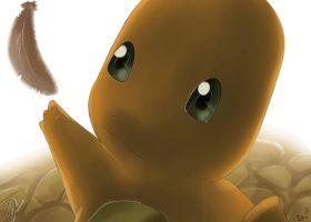 Pokemon Charmander Silvestre by Sorocabano
