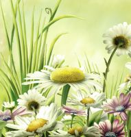 free background flowery by H-stock