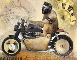 Steampunk monkey by cornix-augur-aquae