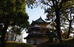 Imperial Palace East Gardens by CD85