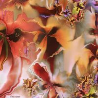 Orchids by Omron