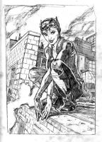 Catwoman sketch by funrama