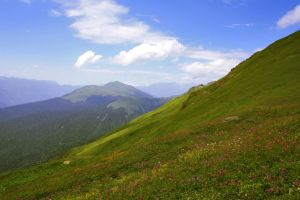 Alpine grasslands by Nietra