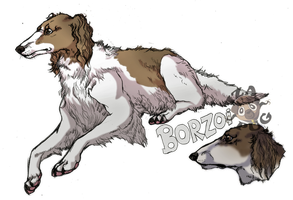 Borzoi by IzaPug