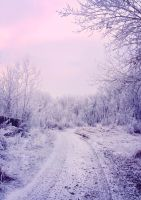 winter landscape by Tumana-stock