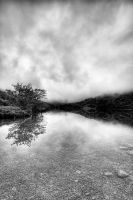 Llyn Dinas 1 by CharmingPhotography