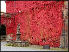 A wall called Autumn... by ansdesign