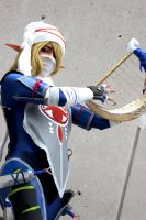 Sheik Hyrule Warriors by AyumiFirePrincess