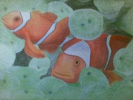 Clownfish by Jigsawlacrimosa