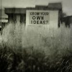 grow your own (black and white) ideas? by davespertine